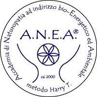 Accademia di Naturopatia ANEA - Pordenone