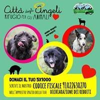 Città degli Angeli Rifugio per Animali