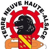 Terre-Neuve Haute-Alsace