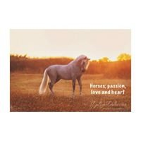 Horses; passion,love and heart