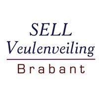 Sell Veulenveiling Brabant