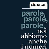Carriere Italia Srl - Ligabue