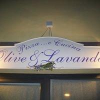 Olive & Lavanda