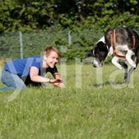 Fellwechsel - Schule für Mensch und Hund