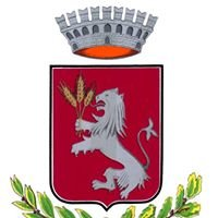 Comune Torrita Di Siena