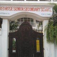 Red Rose Senior Secondary School,lucknow,india.