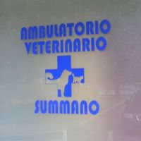 Ambulatorio Veterinario Summano