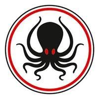 Octopus dive academy