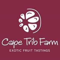 Cape Trib Farm - Exotic Fruit Tasting