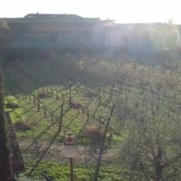 Azienda Agricola Giacomelli