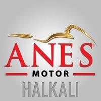 HONDA / Anes Motor
