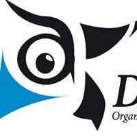 De Koning Organisatie Creativiteit & Ontwikkeling