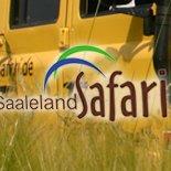 Saaleland Safari