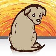 Hunde ohne Heimat e.V.