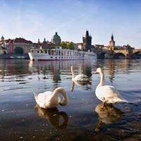 Florentina Boat Prague