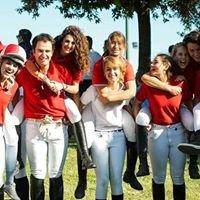 Scuola di Equitazione Micheletto