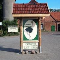 Die Werders Straußenfarm