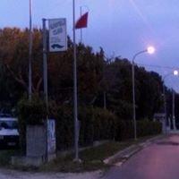 Associazione Grifoli Club Offida