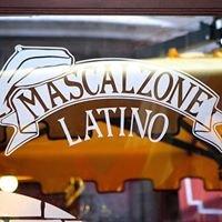 Mascalzone latino