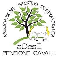 A.S.D. aDesE