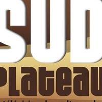 Sud Plateau TV