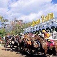 Santa Anita Park Race Results