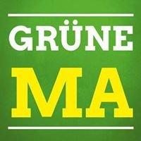 Grüne Mannheim