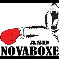 Asd Novaboxe Colli Club