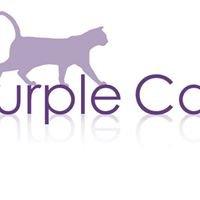 Purple Cat Ltd