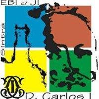Associação de Estudantes D.Carlos I