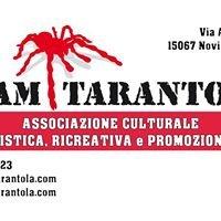 Team Tarantola