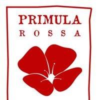 Primula Rossa - Ristoro Creativo