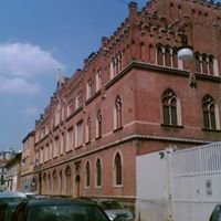 Istituto Vittoria Colonna