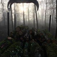 Bois Nature Energie - BNE