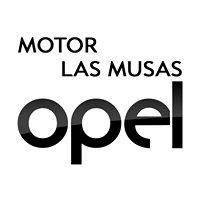 Motor Las Musas, S.L.