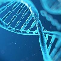 Genetic Metabolic Center for Education