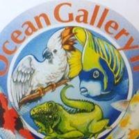 Ocean Gallery Reptiles
