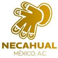 Necahual México AC