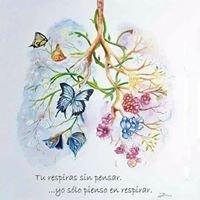 Asociación Andaluza de Fibrosis Quística