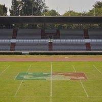 Estadio Jesus Martinez Palillo
