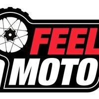 FEELMOTO-Aluguer e aulas de Moto/Moto4, Passeios Kayak, Tour Scooter Régua.
