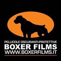 BOXER FILMS di Andrea Berni