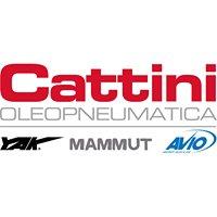 Cattini Oleopneumatica Srl