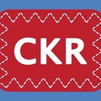 Comox Kite Repair