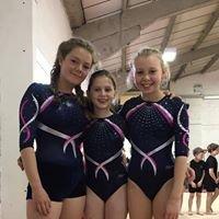 Springbox Gymnastics Club