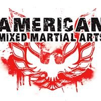 American Mixed Martial Arts