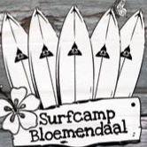Surfcamp Bloemendaal