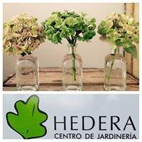 Hedera Centro De Jardinería