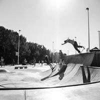Totem Skateboarding