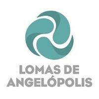 Residencial Lomas de Angelopolis